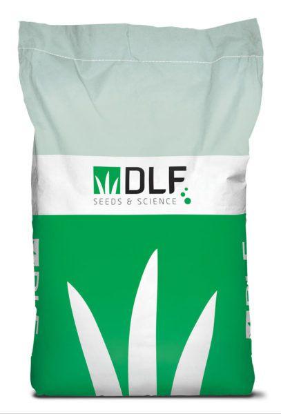DLF_EXPORT_bag_49x71,5x13