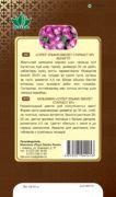 balzamin super elfin violet starbast RG-168-02-ru.indd-down