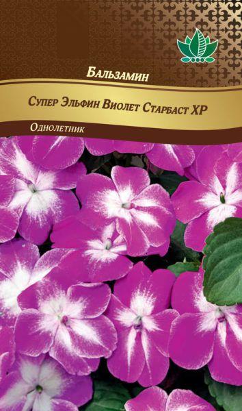 balzamin super elfin violet starbast RG-168-02-ru.indd