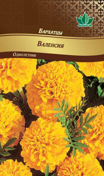 barhatcu valensiay RG-159-02-ru.indd