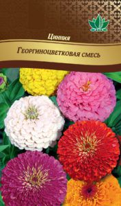 ciniay georginocvetkovay smes RG-196-02-ru.indd