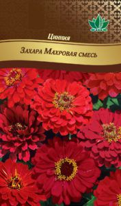 ciniay zahara mahrovay smes RG-197-02-ru.indd