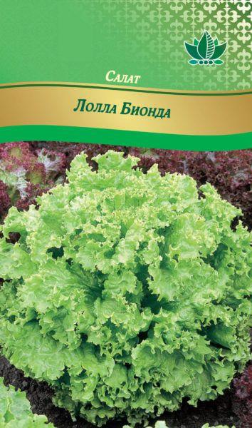 salat lolla bionda RG-214-02-ru.indd