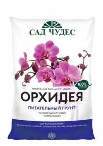 orchidea_5_1_2