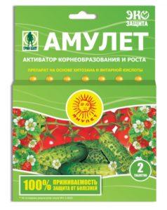 01-057_amulet_0