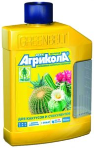 04-445_aqua_kaktus_0
