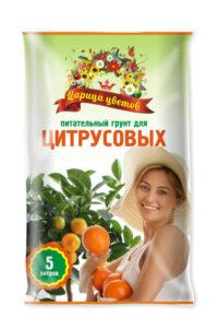 Царица-цветов_цитрусы_5-681x1024