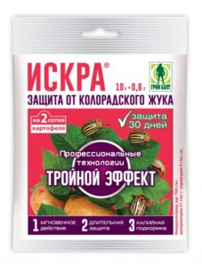 iskra_3_effekt_210h340mm_0